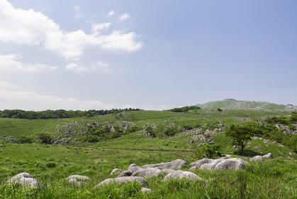 北九州国定公園平尾台