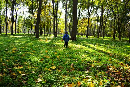 boy running in autumn park