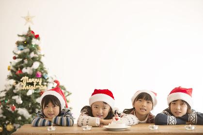 サンタ帽を被った子供達とクリスマスツリー