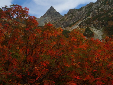 北アルプス槍沢の紅葉と槍ヶ岳