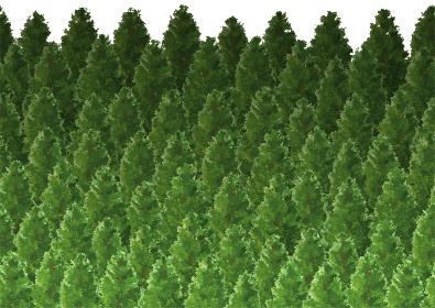 左右にシームレスな森林のイメージ