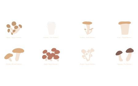 秋の味覚、キノコのシンプルなイラスト 松茸、舞茸、椎茸他のセット