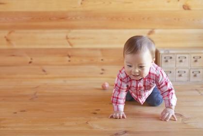 木の床をハイハイする赤ちゃん