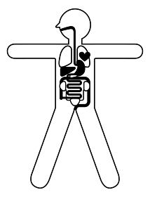 人体解剖図 身体の構造イラスト図解 線画 大の字 心臓 肺 肝臓 胃袋 小腸 大腸 膀胱 腎臓