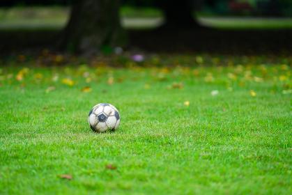 忘れられたサッカーボール