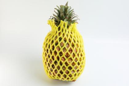 ネットを被った台湾パイナップル