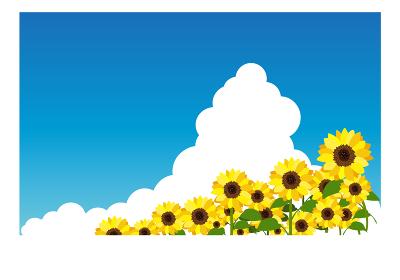 イラスト素材 ひまわり ヒマワリ 向日葵 空 畑 満開 横構図 ベクター