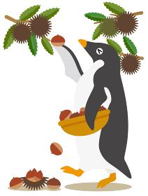 アデリーペンギンな日々 秋の味覚だ栗拾い