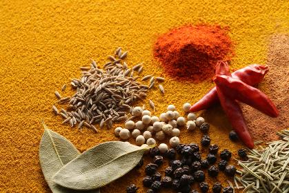 暖色系の背景で撮影したいろいろなスパイスといろいろなスパイス香辛料