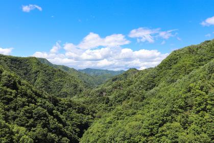 上野ダムからの眺望(群馬県上野村)