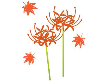 秋のイラスト 紅葉と彼岸花