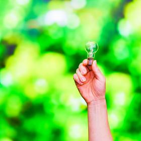 グリーン電力 エコロジー SDGs