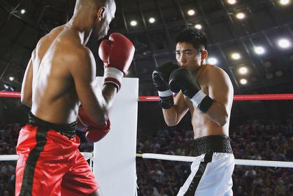 ボクシングの試合イメージ