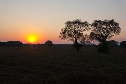Sunrise from Pantanal, Brazil