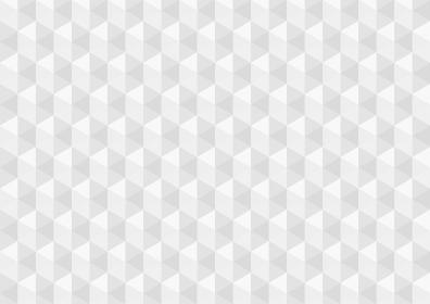 アブストラクト ポリゴンC ホワイト