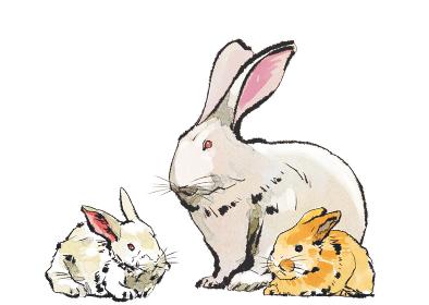 卯 うさぎ ウサギ 親子のイメージ 干支 十二支