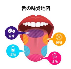 舌の表面の味覚地図 ベクターイラスト