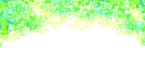 水彩で描いた新緑のフレーム