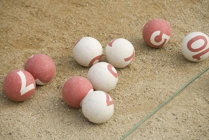 ゲートボールの球