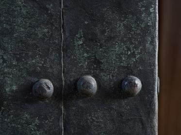木目と鉄の鋲が美しい江戸城の城門