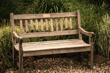 Vacant antique bench. Conception of nostalgia and loneliness. Al , Wojsławice, Lublin Voivodeship, Poland