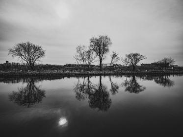 冬の曇り空と池に映り込む木々
