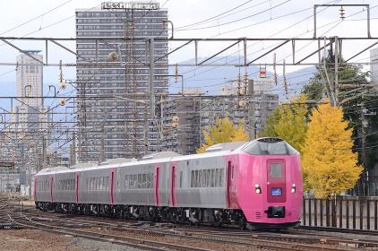 261系はまなす編成で運転された特急「北海道鉄道140年記念おおぞら3号」