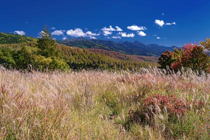 長野県・北横岳 初秋の登山道から眺める南八ヶ岳の風景