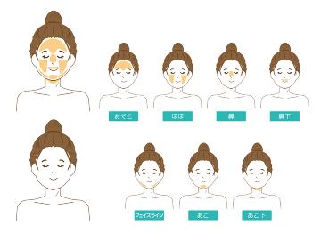 女性の顔 脱毛箇所  ベクターイラスト