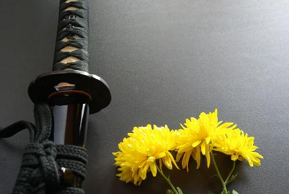 納刀した居合練習刀と黄色い菊の花