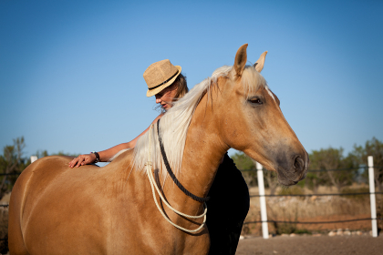 young female reiterin her trained horse outdoors in summer