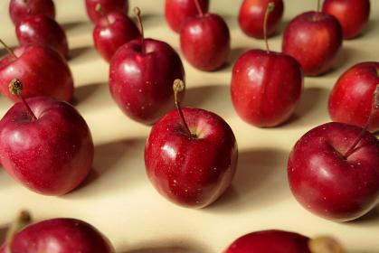 テーブルの上に整列した姫リンゴ 4