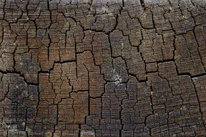 傷のあるヒビの入った茶色い木目 6600