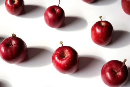 白い紙の上に整列した姫リンゴ 3