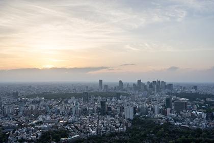 東京都庁・新宿方面の夕景