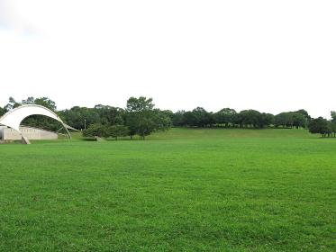 夏の千葉ポートパーク(円形芝生広場・野外ステージ・展望の丘)