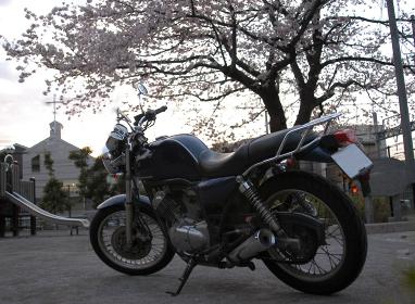 満開の桜とバイクと教会と滑り台