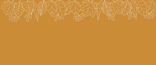 いろいろな葉っぱを並べた線画の背景