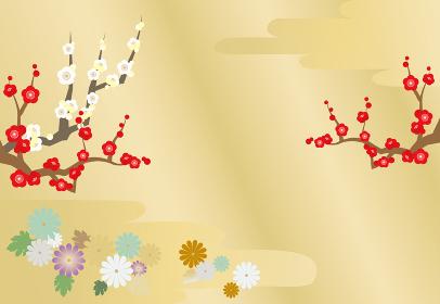紅梅・白梅・菊の花の年賀背景