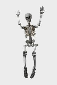 バンザイをする骸骨