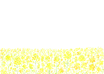水彩で描いた菜の花畑のイラスト