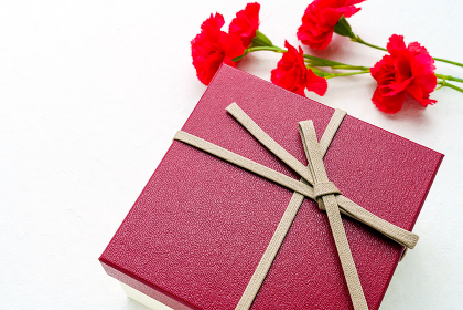 母の日 カーネーションとプレゼント