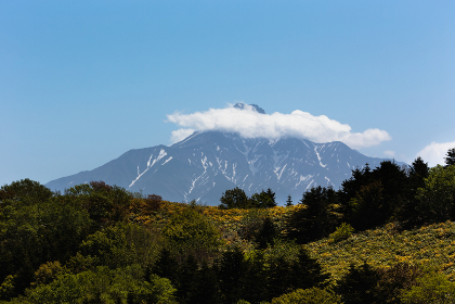 日本最北・5月の北海道礼文島