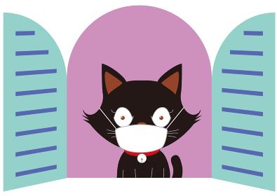 マスクをして換気をする黒猫