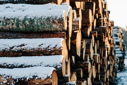 pile of logs covered in snow outside at sunset