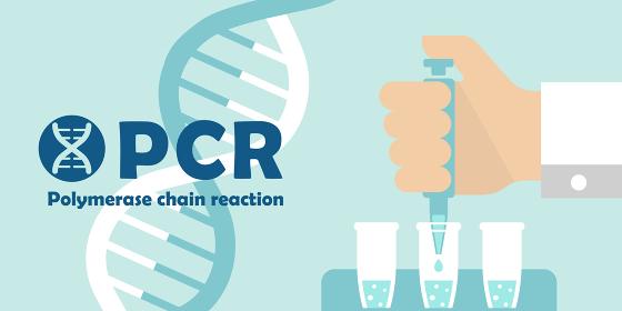 PCR検査 バナーイラスト / 新型コロナウイルス , Covid-19
