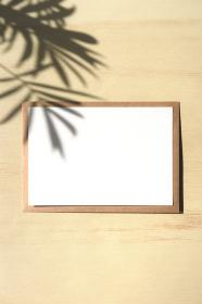 テーブルヤシの影と白いカード 7 縦位置