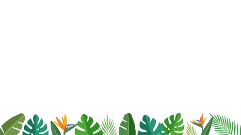 南国トロピカル ボタニカルリーフ 下部、フッター装飾フレーム(白背景、16:9比率)