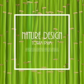 Colorful Stems and Bamboo Leaves Background. Vector Illustration. EPS10. 2015-07-15-12 [??N€?µ???±N€?°?·?????°????N‹??]