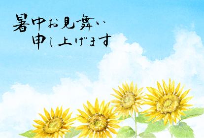 暑中はがきテンプレート ひまわりと夏の空